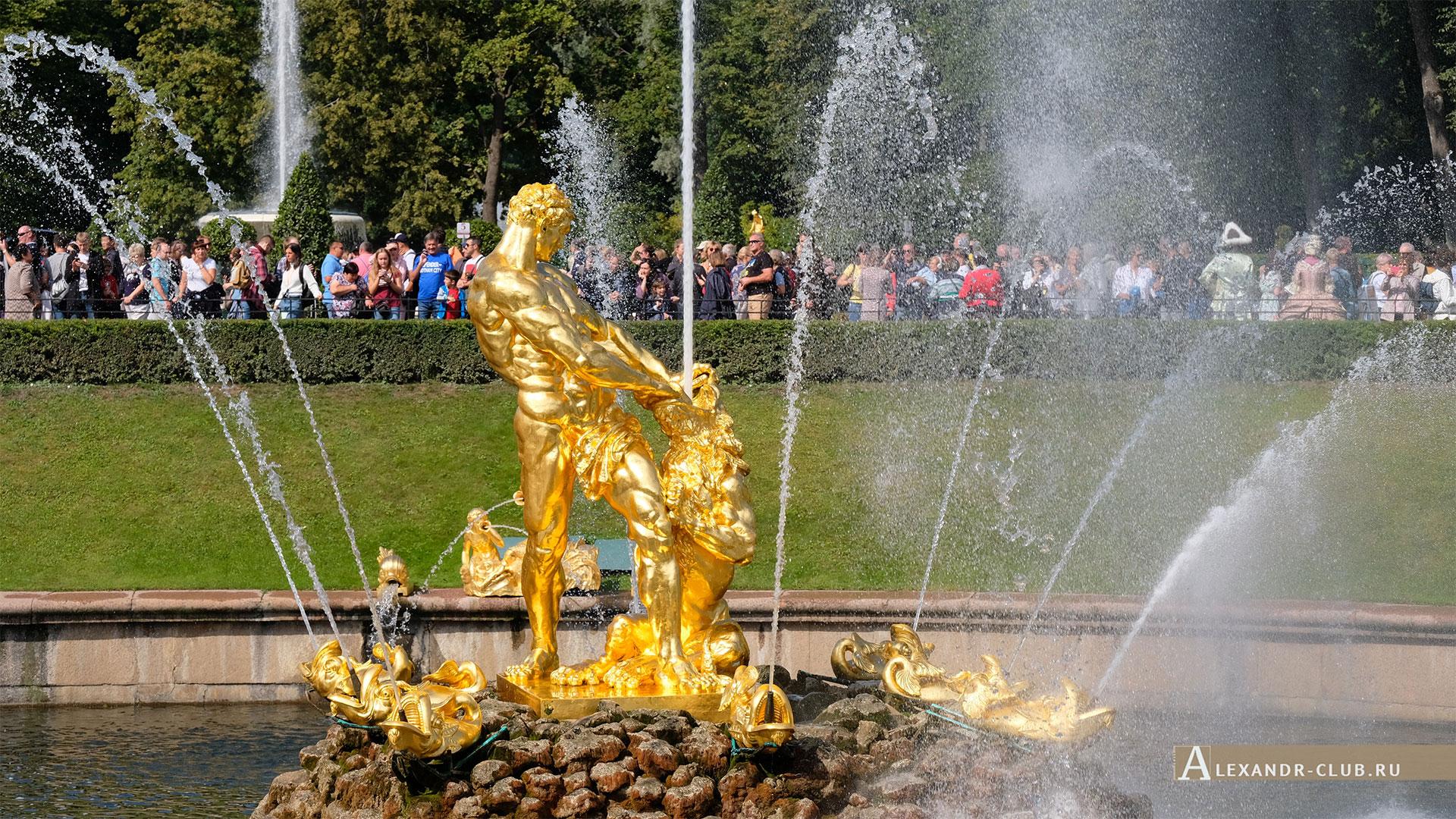Петергоф, лето, Нижний парк, фонтан «Самсон»
