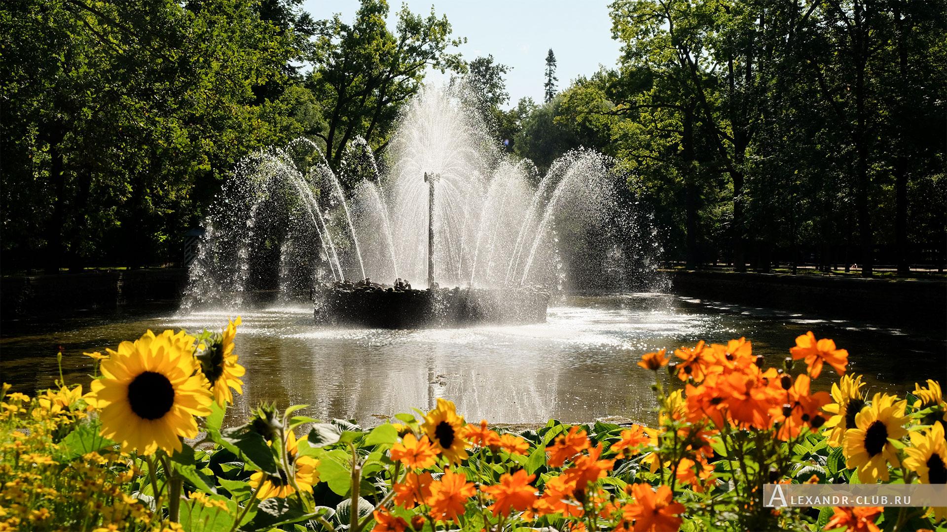 Петергоф, лето, Нижний парк, фонтан «Солнце»