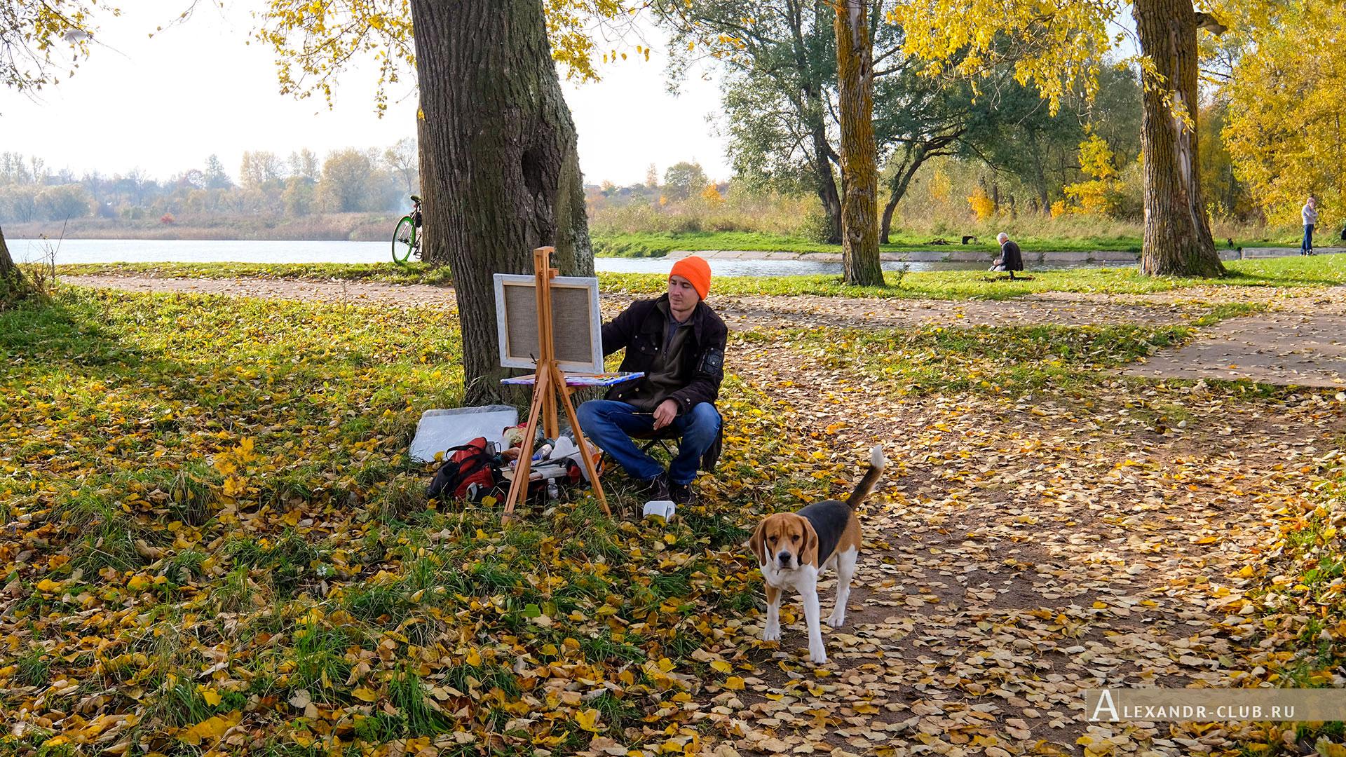 Петергоф, Луговой парк, осень, художник, Бабигонский пруд