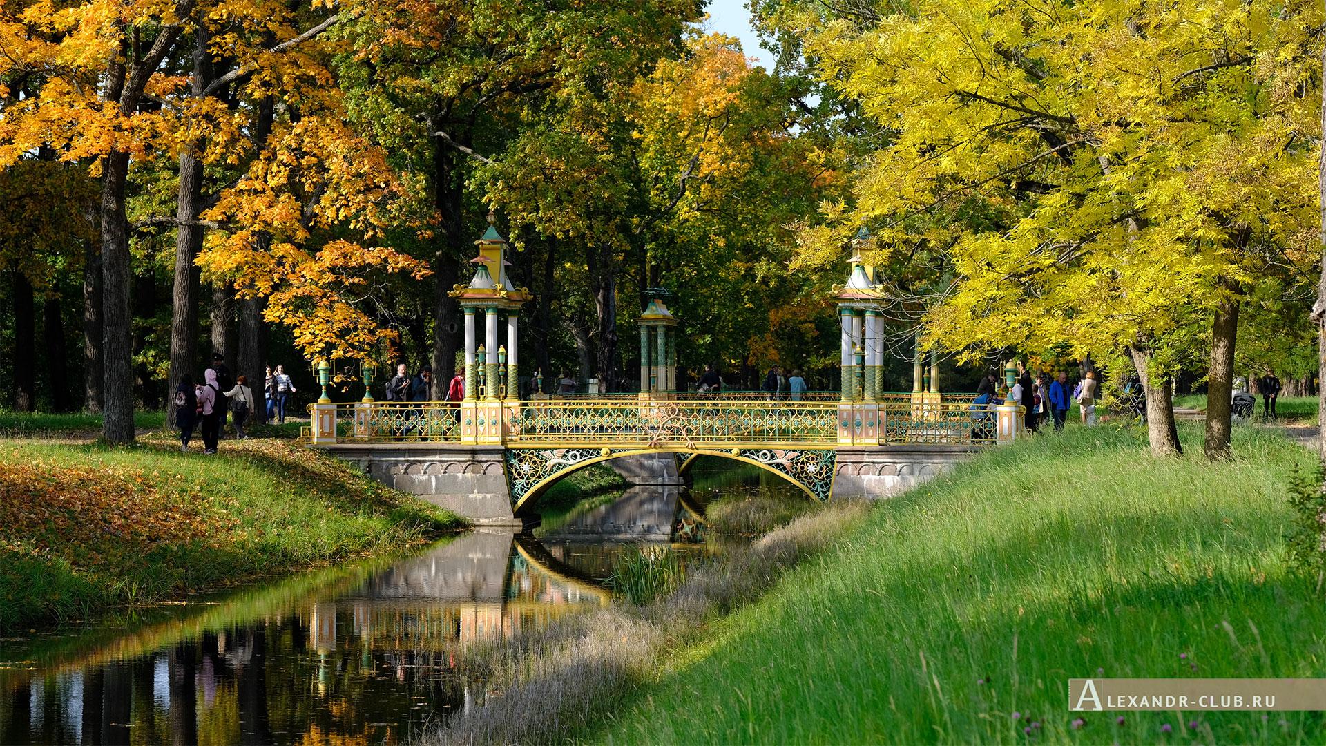 Пушкин, Царское Село, осень, Александровский парк, Китайские мостики
