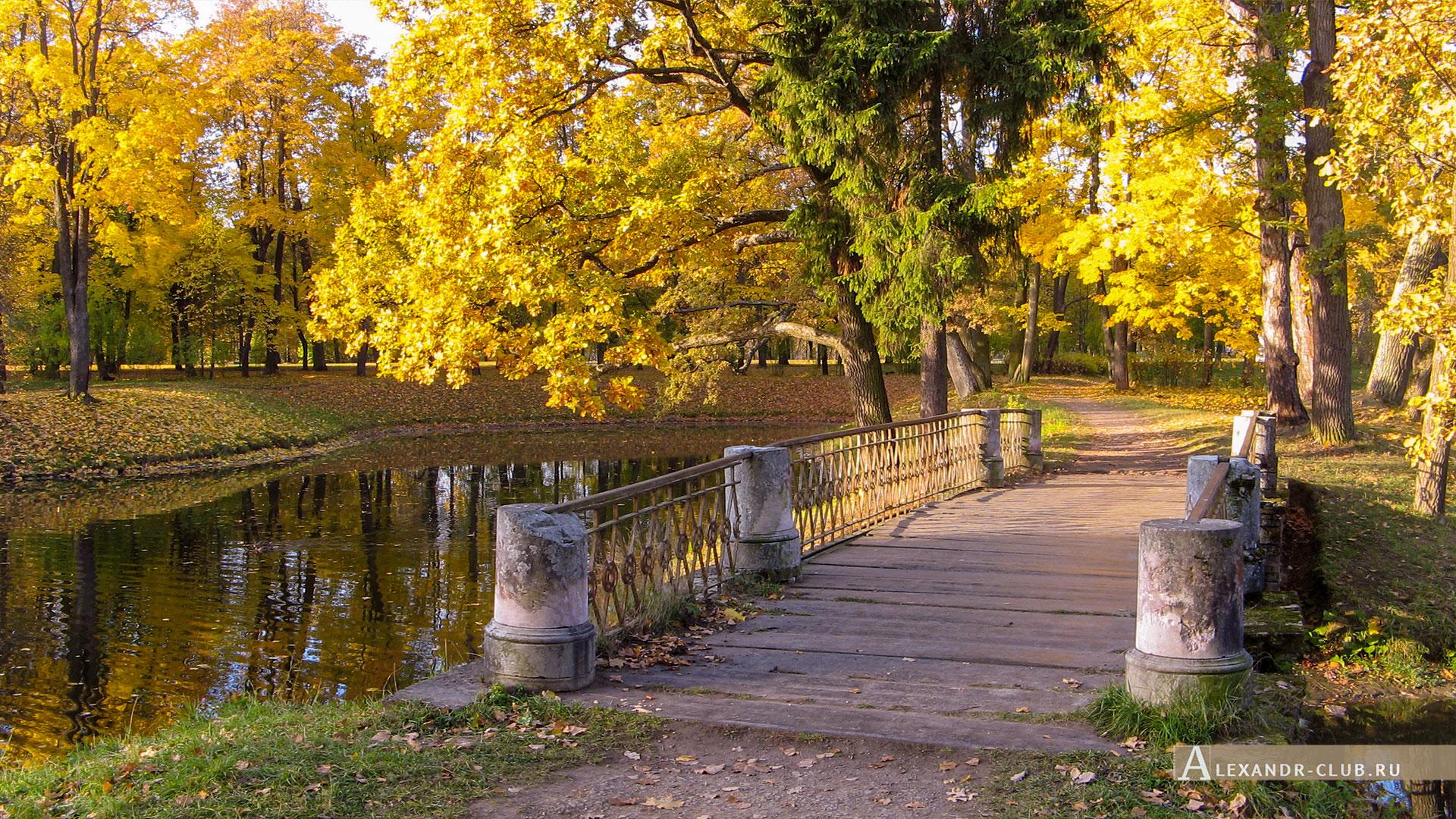 Пушкин, Царское Село, осень, Александровский парк, Прудки, мост