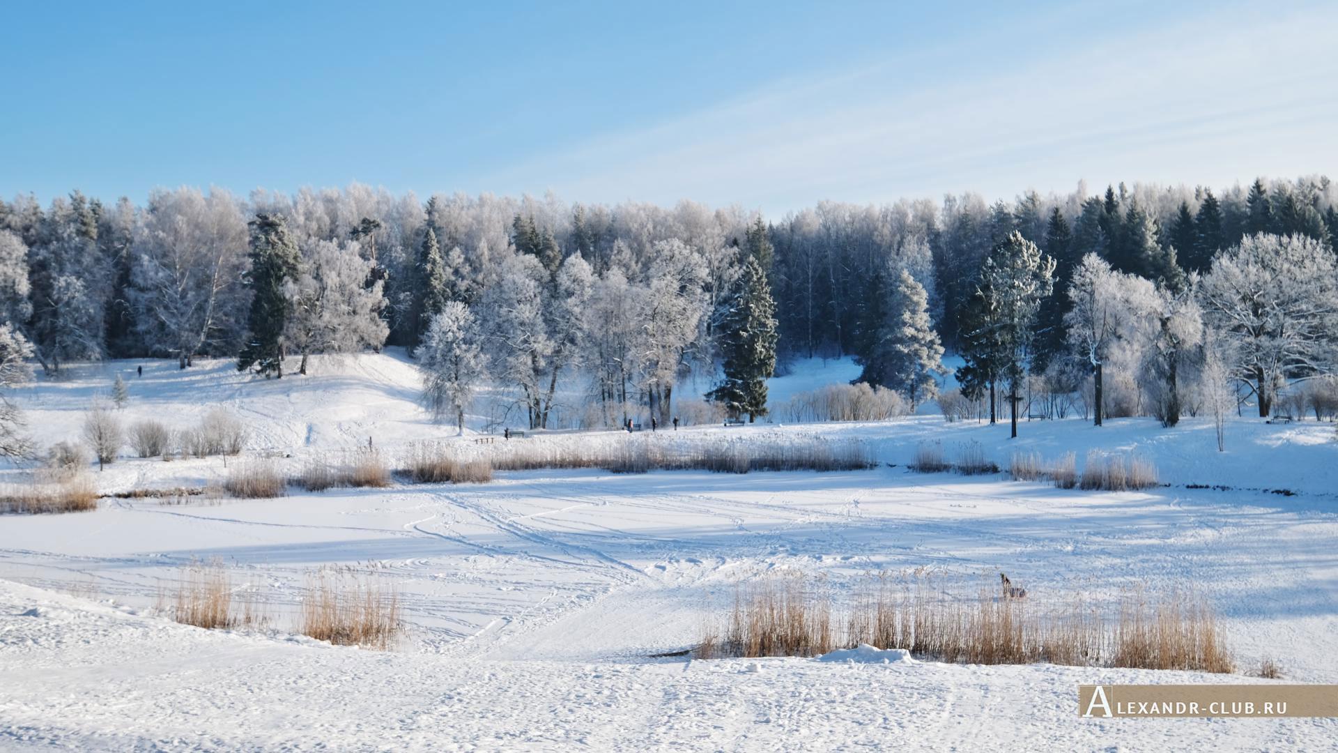 Павловск, зима, Павловский парк, Круглое озеро