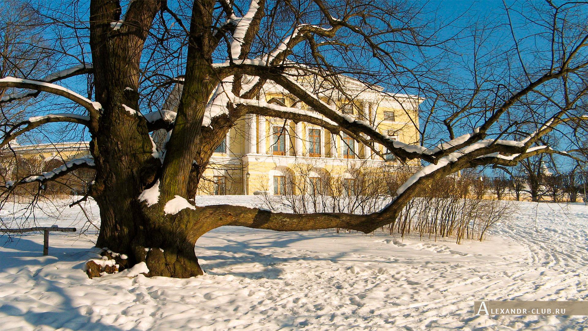 Павловск, зима, Павловский парк, Павловский дворец