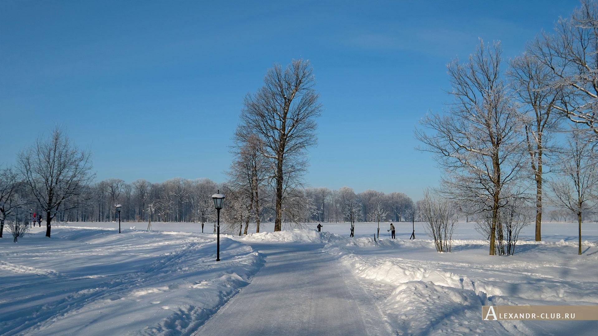 Петергоф, зима, парк «Александрия»